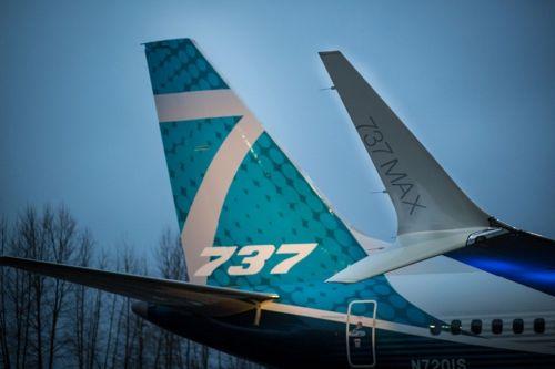 "FAA:修复737 MAX软件问题需要""数月时间"""
